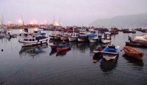 Bolicheras en Puerto de Iquique